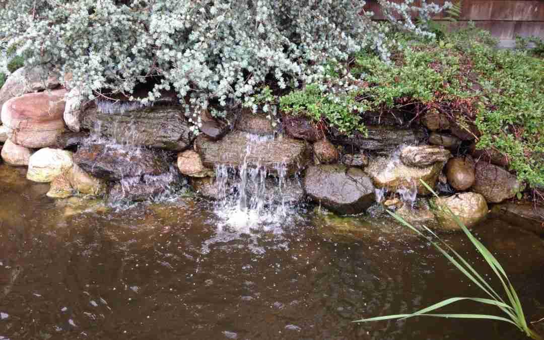 Charles R. – Pond Maintenance