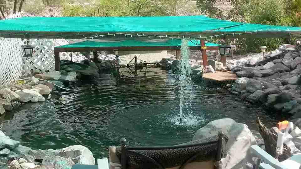 BarbaraJo-May25-2-Pond