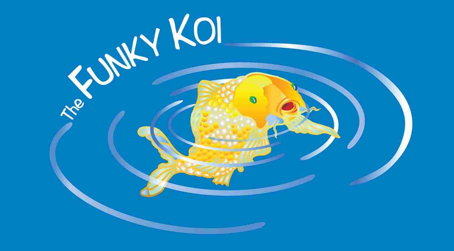 The Funky Koi Berkley Ma: The Funky Koi