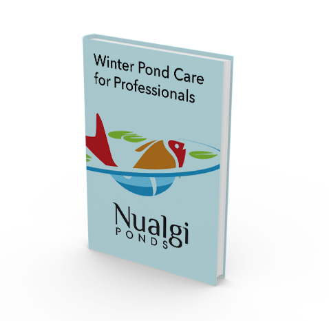 winter pond care guide for koi ponds and garden ponds