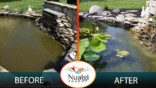 Roy's clear pond Before & After using Nualgi Ponds